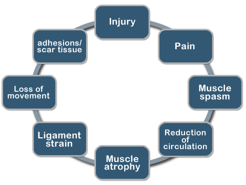 Cycle of Injury